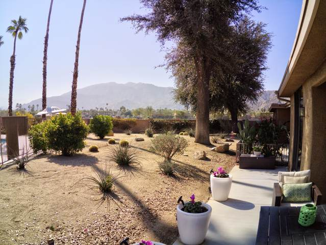 161 La Cerra Drive, Rancho Mirage, CA 92270 (MLS #219047524) :: The John Jay Group - Bennion Deville Homes