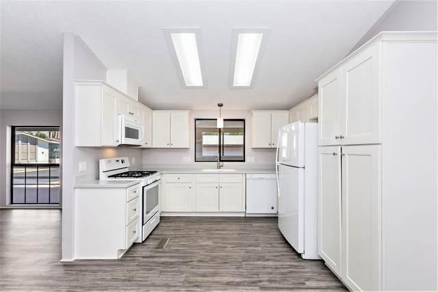 74711 Dillon Road #407, Desert Hot Springs, CA 92241 (MLS #219047594) :: Hacienda Agency Inc