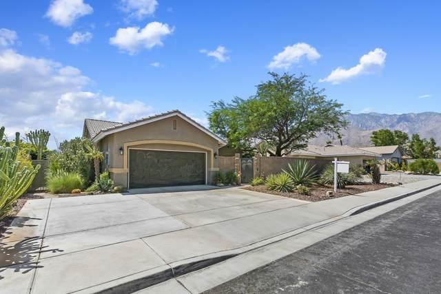 1599 Amelia Way, Palm Springs, CA 92262 (MLS #219047842) :: The Sandi Phillips Team