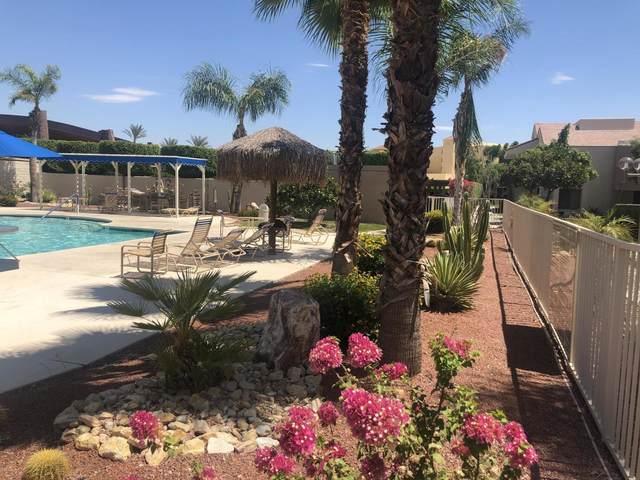 222 N Calle El Segundo, Palm Springs, CA 92262 (MLS #219047884) :: Mark Wise | Bennion Deville Homes