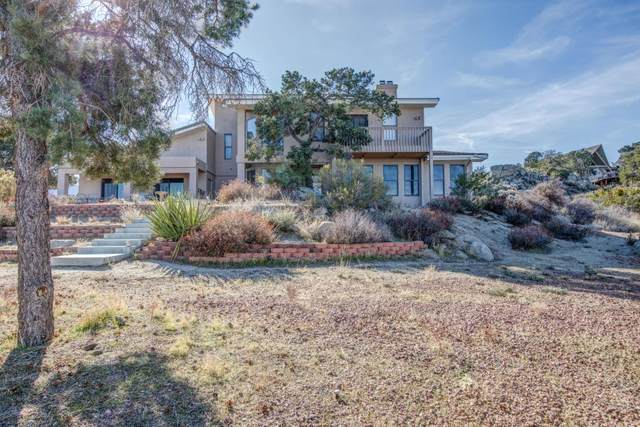 60175 Santa Rosa Road, Mountain Center, CA 92561 (MLS #219048552) :: Zwemmer Realty Group