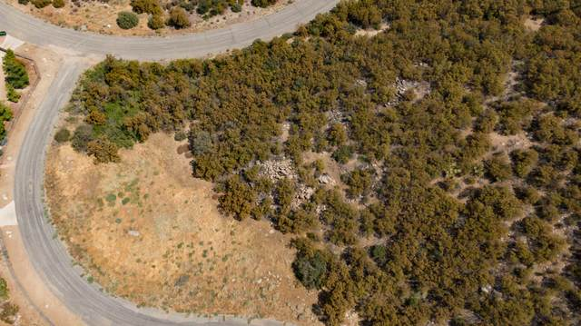 0 Ski View Drive, Mountain Center, CA 92561 (MLS #219048562) :: Zwemmer Realty Group