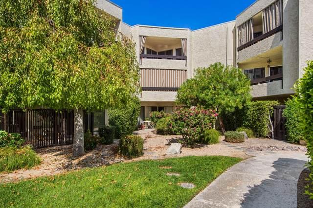 1552 S Camino Real, Palm Springs, CA 92264 (MLS #219049000) :: The Sandi Phillips Team