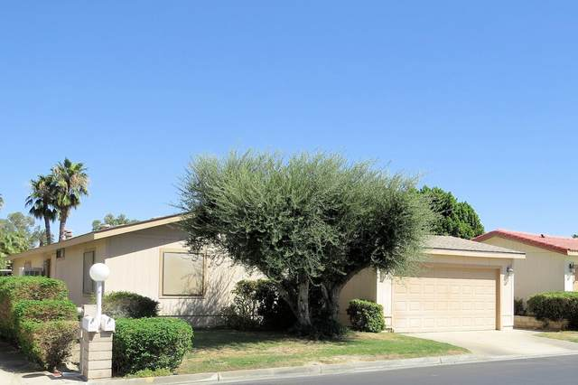 74528 Stage Line Drive, Thousand Palms, CA 92276 (MLS #219049334) :: Zwemmer Realty Group