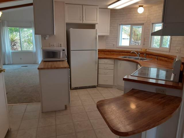 69584 Morningside Drive, Desert Hot Springs, CA 92241 (MLS #219049533) :: Mark Wise | Bennion Deville Homes
