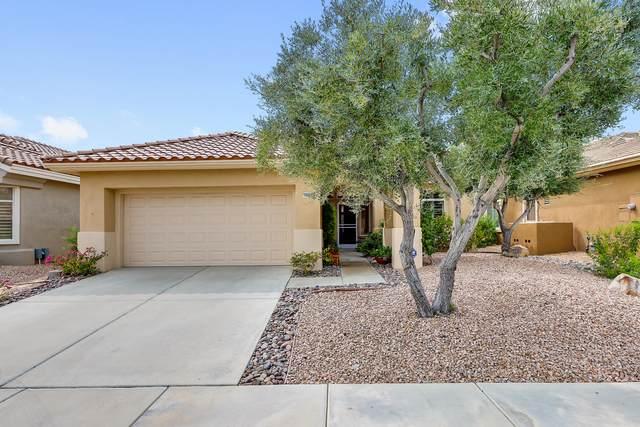 78689 Links Drive, Palm Desert, CA 92211 (MLS #219049593) :: Brad Schmett Real Estate Group