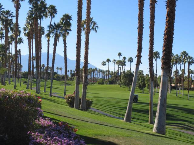 76698 Hollyhock Drive, Palm Desert, CA 92211 (MLS #219049650) :: The John Jay Group - Bennion Deville Homes