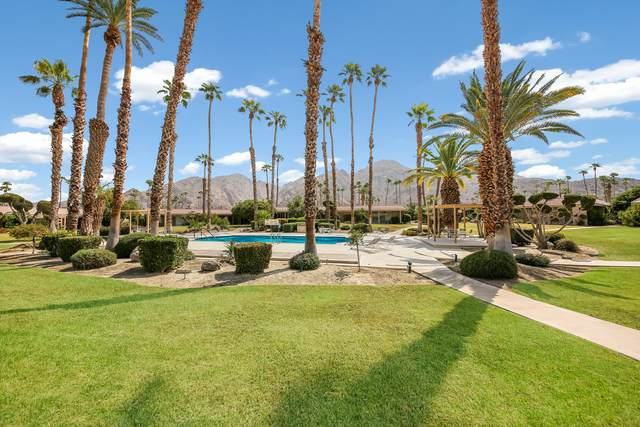 76855 Sandpiper Drive, Indian Wells, CA 92210 (MLS #219049915) :: The Jelmberg Team