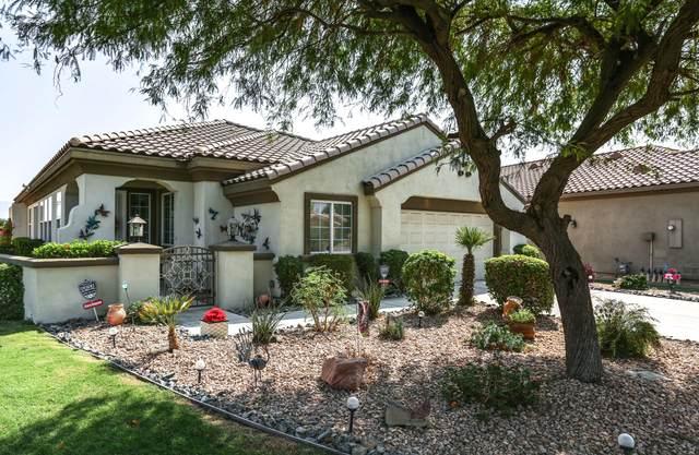80594 Hoylake Drive, Indio, CA 92201 (MLS #219049943) :: The Jelmberg Team