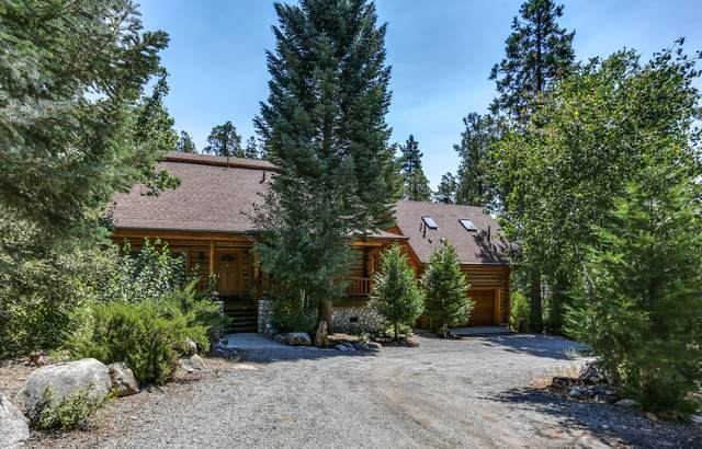 55335 Dogwood Drive, Idyllwild, CA 92549 (MLS #219049989) :: The John Jay Group - Bennion Deville Homes