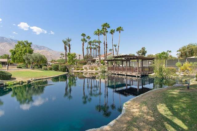 1901 Paseo Pelota, Palm Springs, CA 92262 (MLS #219050145) :: Mark Wise | Bennion Deville Homes
