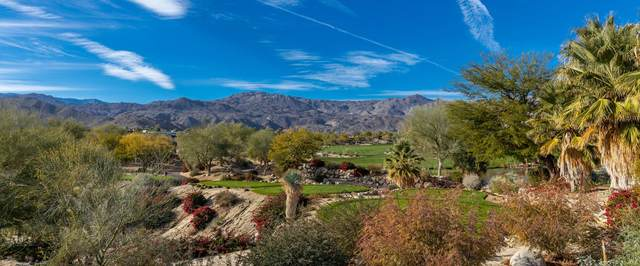 876 Andreas Canyon Drive, Palm Desert, CA 92260 (MLS #219050194) :: The Sandi Phillips Team