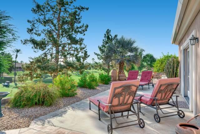 39579 Manorgate Road, Palm Desert, CA 92211 (MLS #219050308) :: The Jelmberg Team