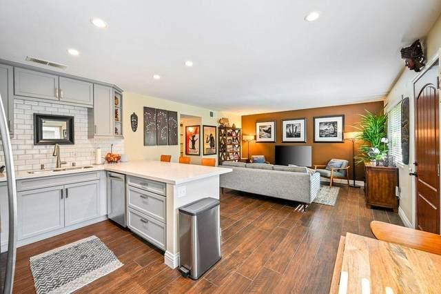 365 N Saturmino Drive, Palm Springs, CA 92262 (MLS #219050309) :: KUD Properties