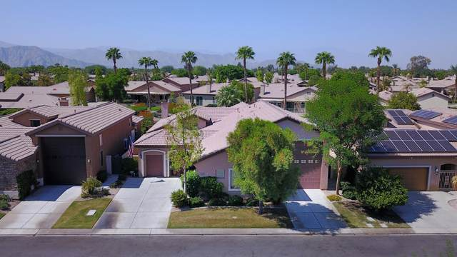 49743 Lewis Road, Indio, CA 92201 (MLS #219050328) :: Desert Area Homes For Sale