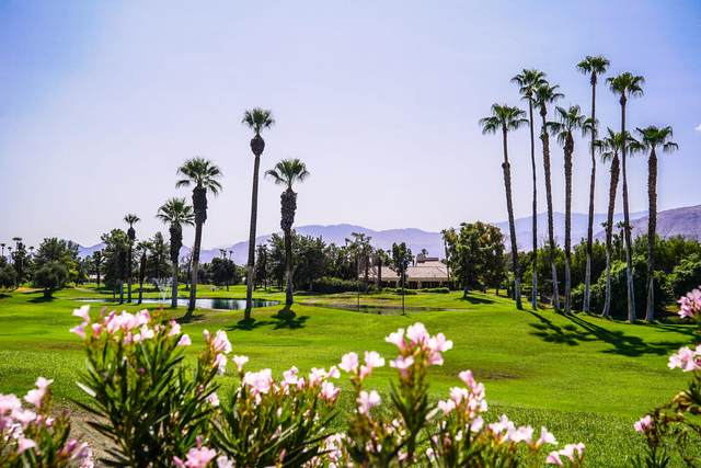 44 N Kavenish Drive, Rancho Mirage, CA 92270 (MLS #219050445) :: Zwemmer Realty Group