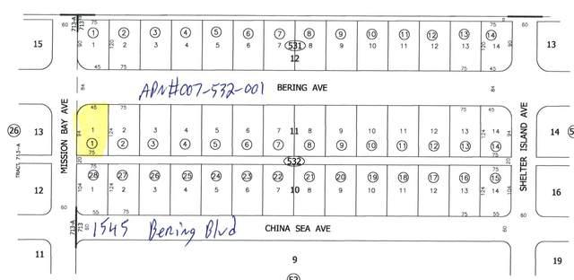 1545 Bering Boulevard, Salton City, CA 92275 (MLS #219050588) :: Zwemmer Realty Group