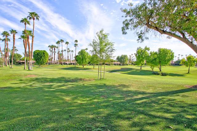 76 Lookout Drive, Palm Desert, CA 92211 (MLS #219050614) :: Brad Schmett Real Estate Group