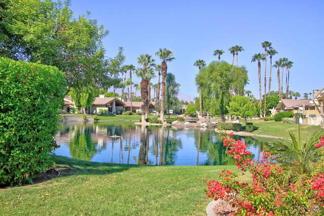117 Deer Spring Way, Palm Desert, CA 92211 (MLS #219050703) :: Zwemmer Realty Group