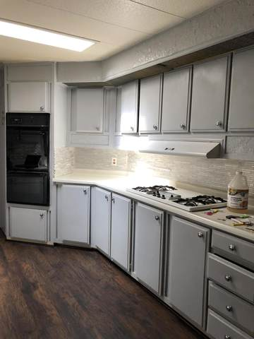 406 S Paseo Laredo, Cathedral City, CA 92234 (MLS #219050822) :: Brad Schmett Real Estate Group