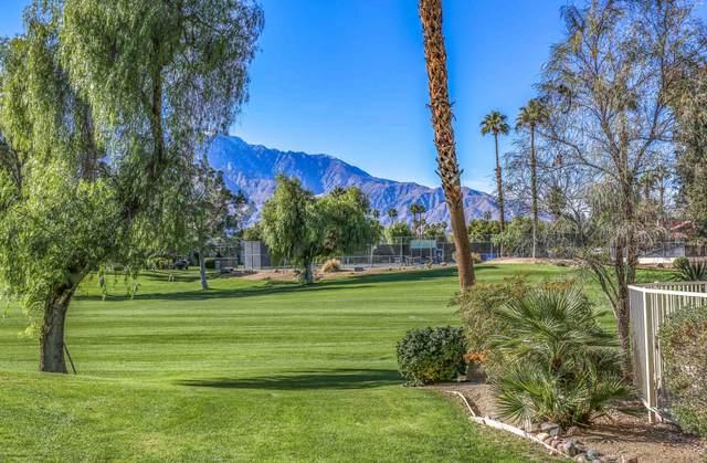 28815 E Portales Drive, Cathedral City, CA 92234 (MLS #219050946) :: Mark Wise | Bennion Deville Homes
