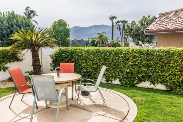 78620 Saguaro Road, La Quinta, CA 92253 (MLS #219051041) :: Brad Schmett Real Estate Group