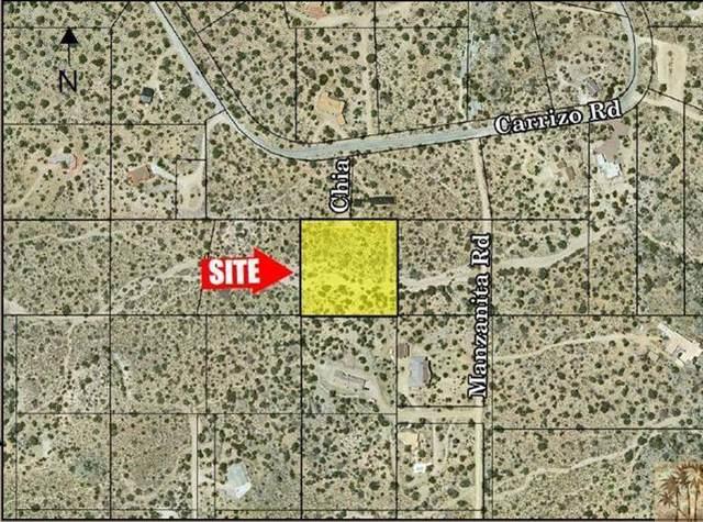 0 Chia Lane, Mountain Center, CA 92561 (MLS #219051284) :: Zwemmer Realty Group