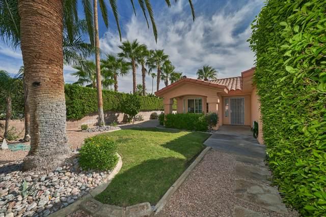 792 N Calle Rolph, Palm Springs, CA 92262 (MLS #219051340) :: The Sandi Phillips Team