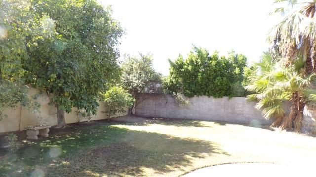 3113 Sunflower Loop, Palm Springs, CA 92262 (MLS #219051437) :: Zwemmer Realty Group