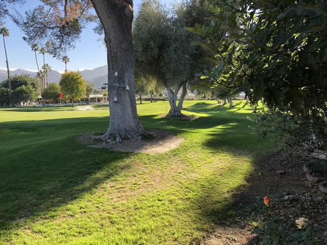 459 Cerritos Way, Cathedral City, CA 92234 (MLS #219051455) :: Brad Schmett Real Estate Group