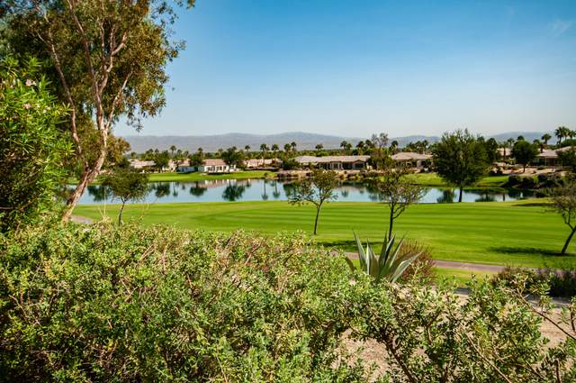 60974 Desert Rose Drive, La Quinta, CA 92253 (MLS #219051702) :: Zwemmer Realty Group