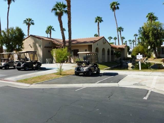 84136 Avenue 44 # 561 #561, Indio, CA 92203 (MLS #219051784) :: The Jelmberg Team