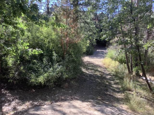 0 Deer Way, Lake Arrowhead, CA 92352 (MLS #219051846) :: Zwemmer Realty Group