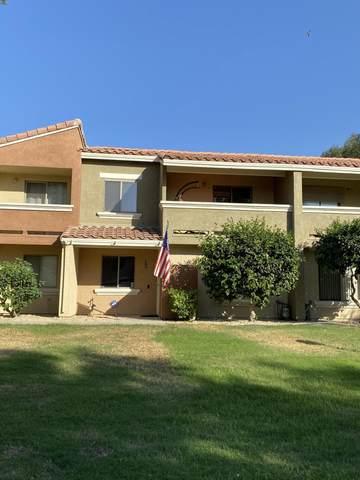 390 Tava Lane, Palm Desert, CA 92211 (MLS #219051855) :: The Jelmberg Team
