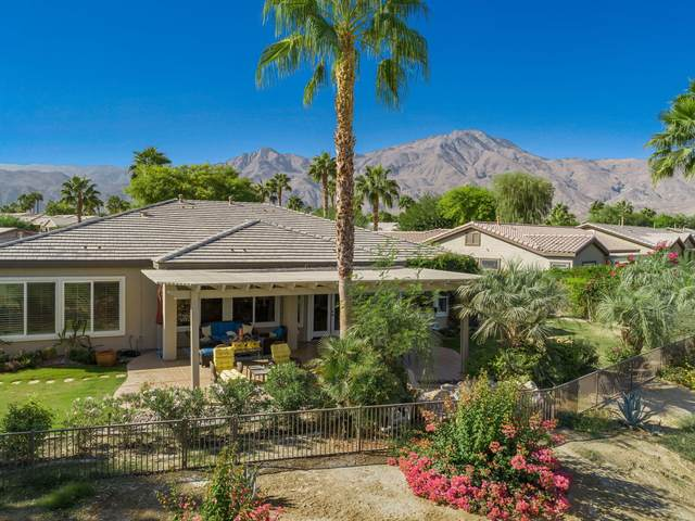 81326 Barrel Cactus Road, La Quinta, CA 92253 (MLS #219051865) :: Zwemmer Realty Group
