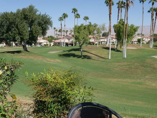 78337 Scarlet Court, La Quinta, CA 92253 (MLS #219051896) :: Mark Wise | Bennion Deville Homes