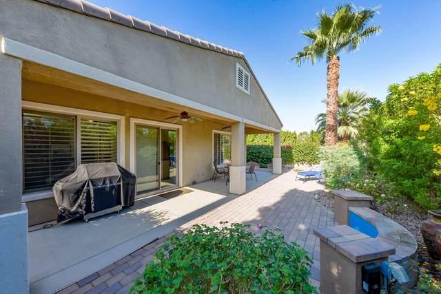 80815 Camino Santa Paula, Indio, CA 92203 (MLS #219051910) :: Mark Wise | Bennion Deville Homes