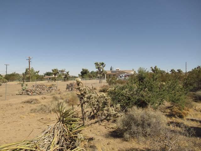 8066 Sage Avenue, Yucca Valley, CA 92284 (#219052020) :: The Pratt Group