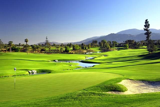 81292 Peary Place, La Quinta, CA 92253 (MLS #219052063) :: The Jelmberg Team