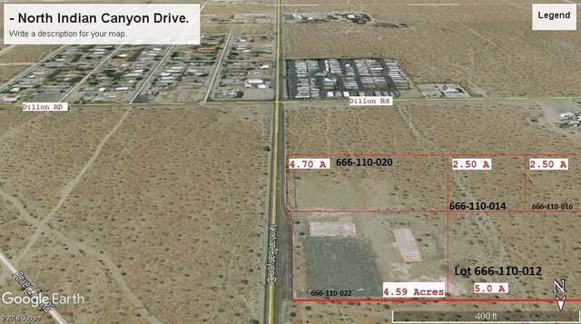16604 N Indian Canyon Drive, Desert Hot Springs, CA 92240 (MLS #219052077) :: Brad Schmett Real Estate Group