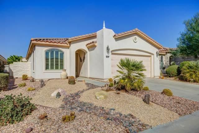 80538 Avenida Camarillo, Indio, CA 92203 (MLS #219052098) :: Brad Schmett Real Estate Group