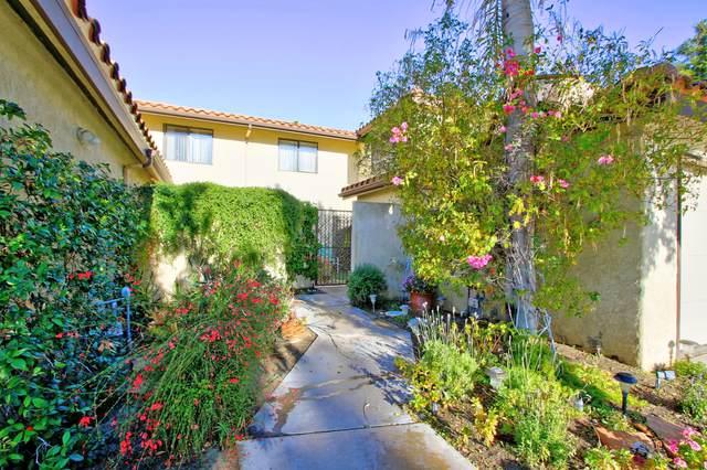 311 Lakewood Lane, Palm Desert, CA 92260 (MLS #219052123) :: The Jelmberg Team