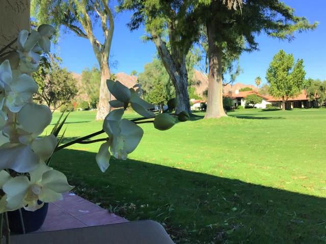78202 Lago Drive, La Quinta, CA 92253 (MLS #219052129) :: Brad Schmett Real Estate Group