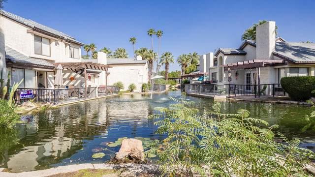 #9 Portola Drive Drive, Palm Springs, CA 92264 (MLS #219052156) :: Brad Schmett Real Estate Group