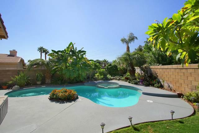 79115 Diane Drive, La Quinta, CA 92253 (MLS #219052185) :: Brad Schmett Real Estate Group