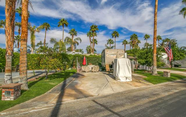 69411 Ramon Road #59, Cathedral City, CA 92234 (MLS #219052805) :: The Jelmberg Team