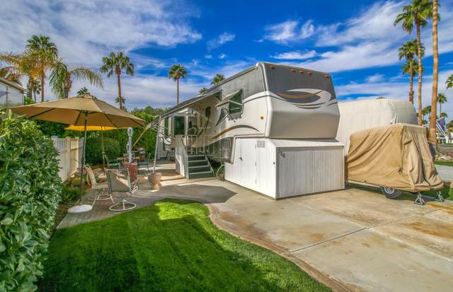 69411 Ramon Road #704, Cathedral City, CA 92234 (MLS #219052811) :: The Jelmberg Team