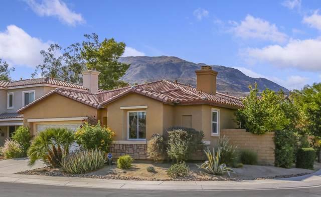 431 Vista Bonita, Palm Desert, CA 92260 (MLS #219053044) :: The Jelmberg Team