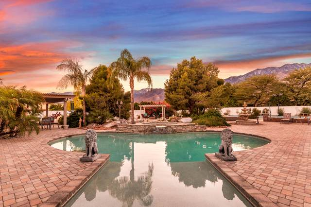 2875 E Baristo Road, Palm Springs, CA 92262 (MLS #219053069) :: Mark Wise | Bennion Deville Homes