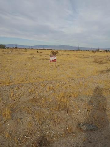 1300 Sea Life Ave, Thermal, CA 92274 (MLS #219053084) :: Brad Schmett Real Estate Group